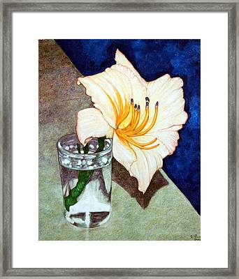 Day Lily In A Water Glass Framed Print by Edward Ruth