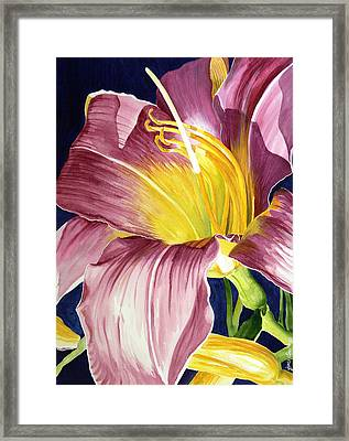 Day Lily In Sunlight Framed Print by Janis Grau