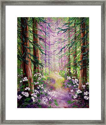 Daybreak In Springtime Redwood Trees Framed Print by Laura Iverson