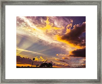 Daybreak Framed Print by MaryLee Parker