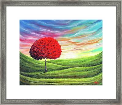 Daybreak Framed Print by Rachel Bingaman