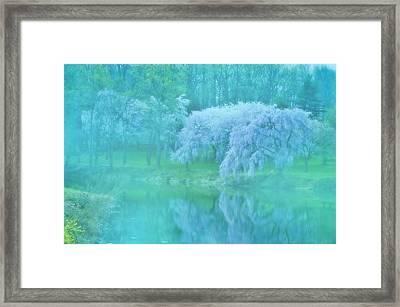 Daydream - Holmdel Park Framed Print by Angie Tirado