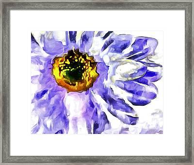 Daydream Daisy Framed Print by Krissy Katsimbras