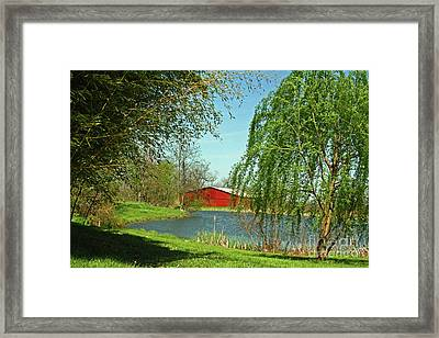 Daydreamin'  Framed Print