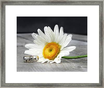 Daydreams Of Framed Print by Elizabeth Reynders