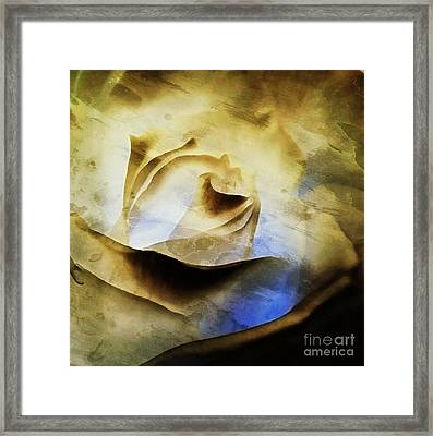 Framed Print featuring the painting Days Go By - Rose - Dreamscape by Janine Riley