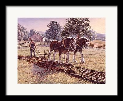 Plow Horse Framed Prints