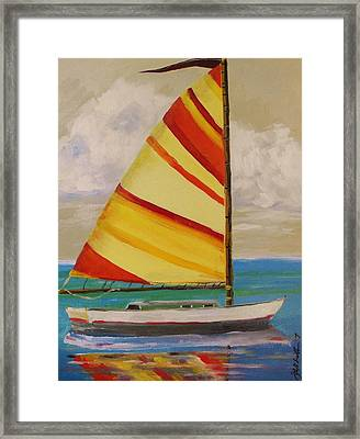 Daysailer By John Williams Framed Print