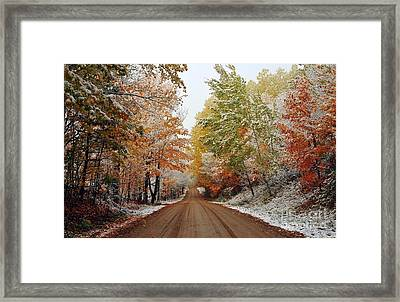 Dazzled By Snow In Autumn Framed Print by Terri Gostola