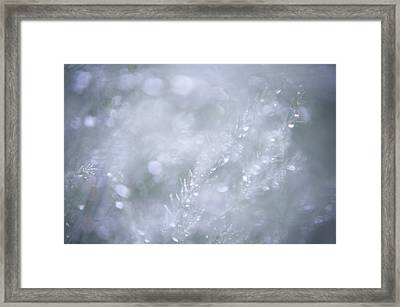 Dazzling Silver World Framed Print by Jenny Rainbow