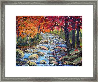 Dazzling View From The Rapidan Framed Print