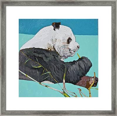 Dc Panda Framed Print by Jamie Downs