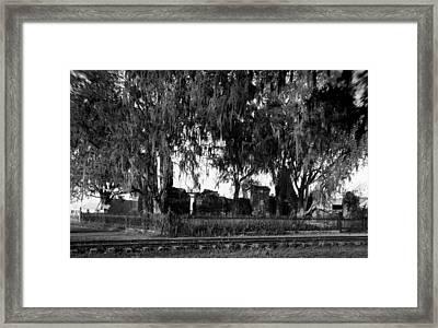 De La Ronde Plantation Home Ruins Framed Print