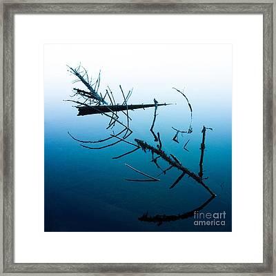 Dead Branches Into A Lake Framed Print by Bernard Jaubert