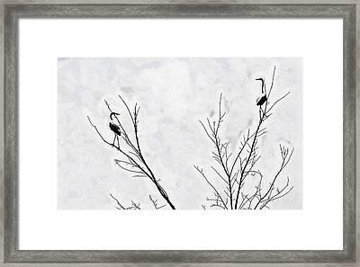 Dead Creek Cranes Framed Print