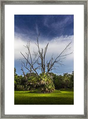Dead End Framed Print by Marvin Spates