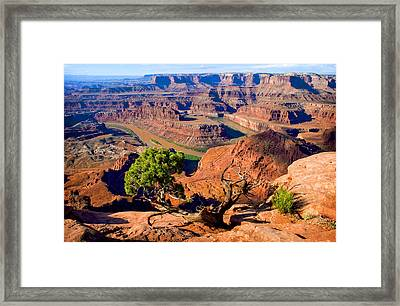 Dead Horse Point Framed Print