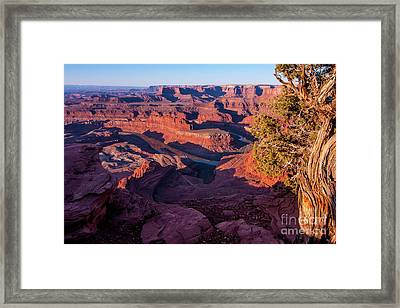 Dead Horse Point Sunrise - Utah Framed Print by Gary Whitton