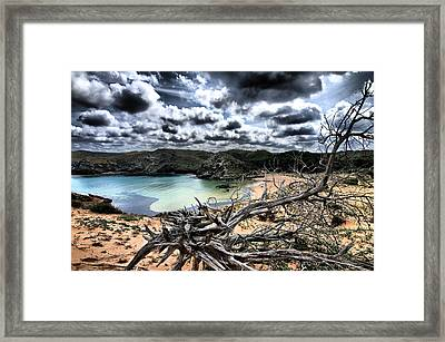 Dead Nature Under Stormy Light In Mediterranean Beach Framed Print by Pedro Cardona