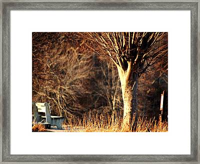 Dead Of Winter Framed Print
