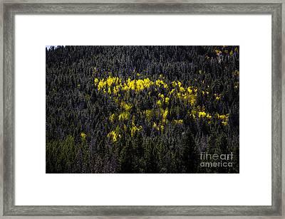 Yellow Fire Framed Print
