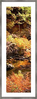 2 Of 6 Dead River Falls  Marquette Michigan Section Framed Print