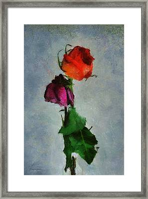 Framed Print featuring the digital art Dead Roses by Francesa Miller
