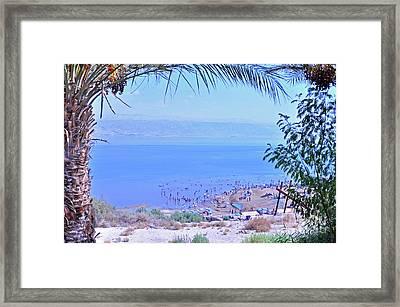 Dead Sea Overlook 2 Framed Print