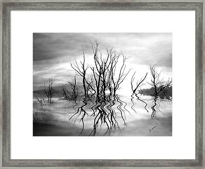 Framed Print featuring the photograph Dead Trees Bw by Susan Kinney
