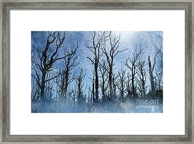 Dead Trees In Blue Framed Print