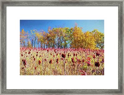 Deadly Beauty In The Blue Ridge Ap Framed Print by Dan Carmichael