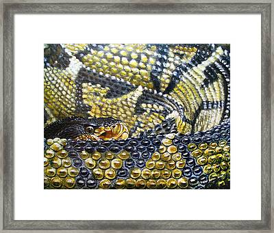 Deadly Details Framed Print by Cara Bevan