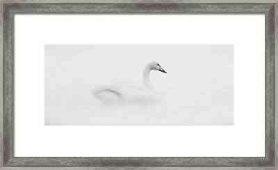 Deadly Waiting Framed Print