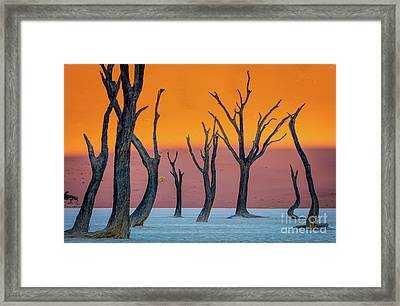 Deadvlei Abstract Framed Print