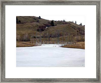 Deadwood Inlet Framed Print
