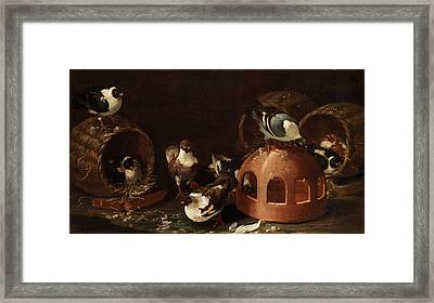 Deaf Between Feed Trough And Baskets Framed Print