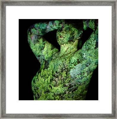Deanna Framed Print by Arla Patch