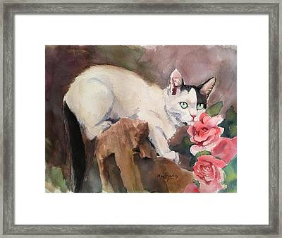 Deano In The Roses Framed Print