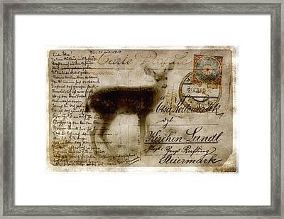 Dear Deer Framed Print by Carol Leigh