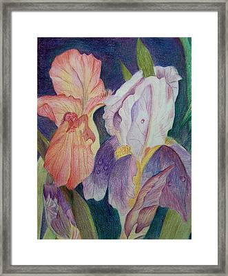 Dear Iris Framed Print