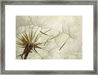 Dearly Departed Framed Print by Jan Piller