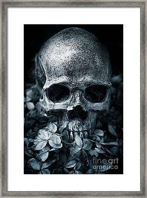 Framed Print featuring the photograph Death Comes To Us All by Edward Fielding