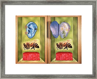 Death Of The Canadian Bee Framed Print