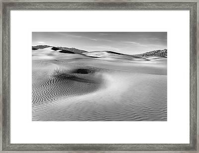 Death Valley Contours Framed Print