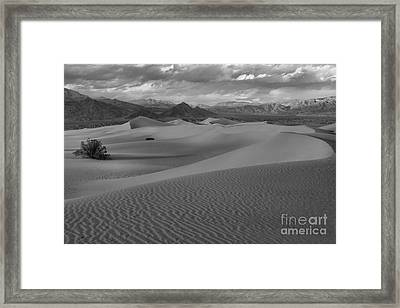 Death Valley Dunes Black And White Framed Print by Adam Jewell