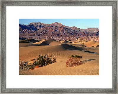 Death Valley Dunes Framed Print by Tom Kidd