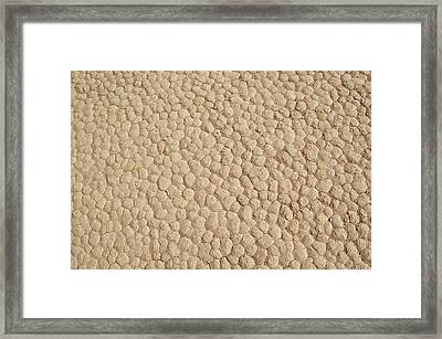 Death Valley Mud Framed Print