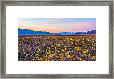 Death Valley Sunset Framed Print