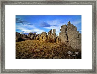 Death Without Company Framed Print by Jon Burch Photography
