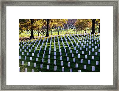 Debt Of Gratitude Framed Print by Mitch Cat